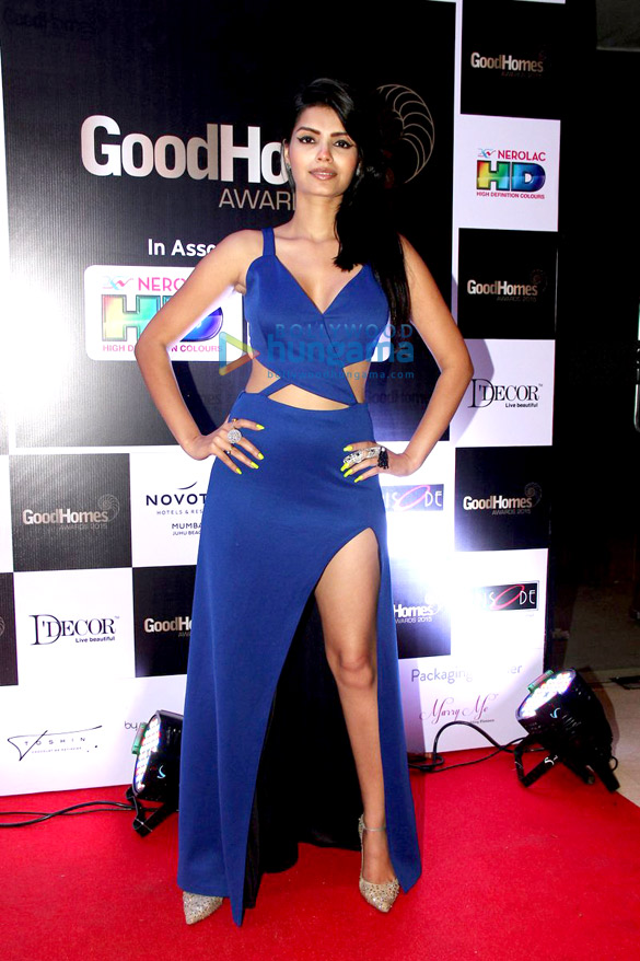 The Good Homes awards with socialites and models