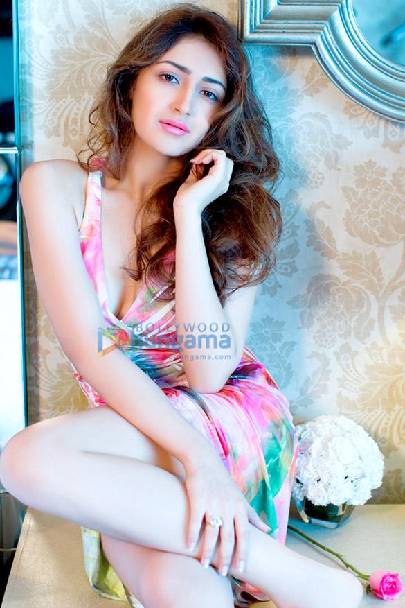 Celebrity Photo Of Sayyeshaa Saigal