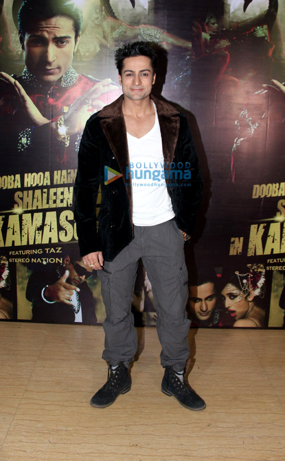 Launch of music album 'Kamasutra'