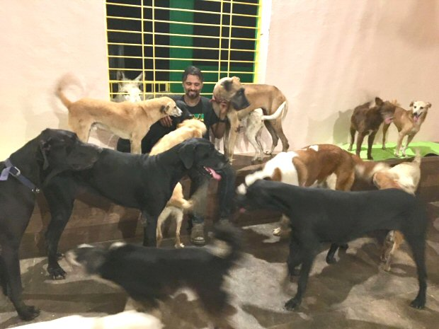 Pooja Bhatt turns her farmhouse into a 22,000 square feet animal shelter1