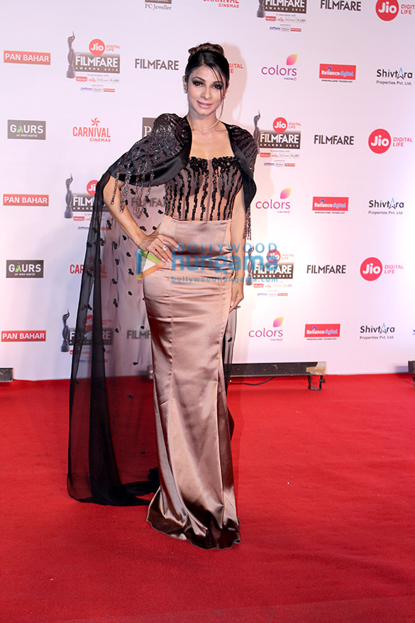 Celebs attend the 63rd Jio Filmfare Awards 20181 (23)