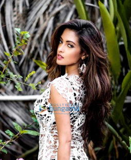 Celebrity Photos of Riya Sen