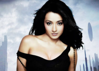 Trisha Krishnan LASHES out at fans who disrespect her co-actors