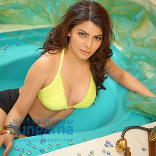 Celebrity Photo Of Sherlyn Chopra
