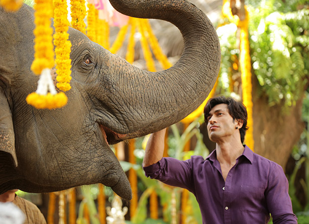 """""""It was the biggest high of my life when the elephant understood my command for the first time"""", says Vidyut Jammwal"""