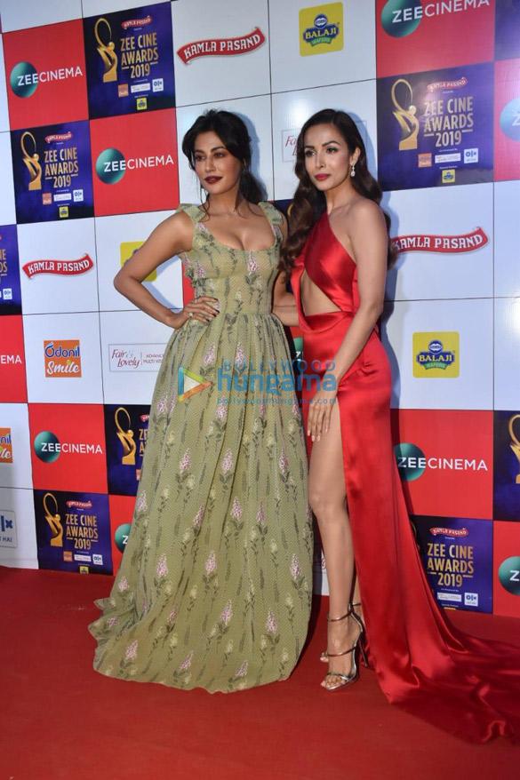 Celebs grace Zee Cine Awards 2019 (6)