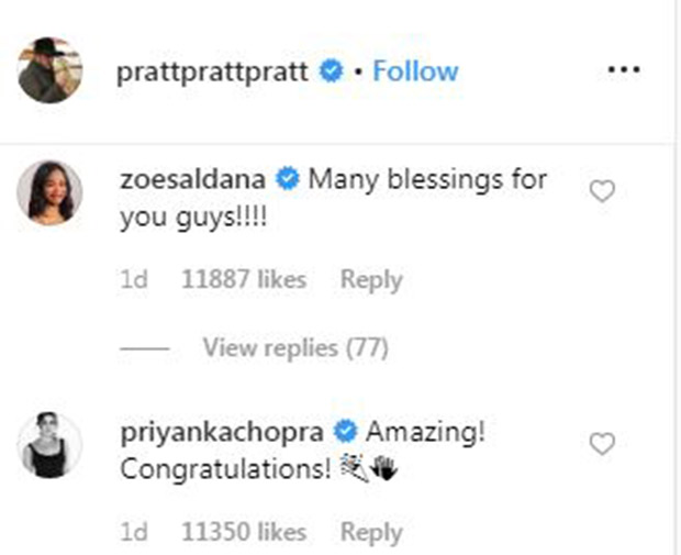Here's how Priyanka Chopra sent across her best wishes to newlyweds Chris Pratt and Katherine Schwarzenegger