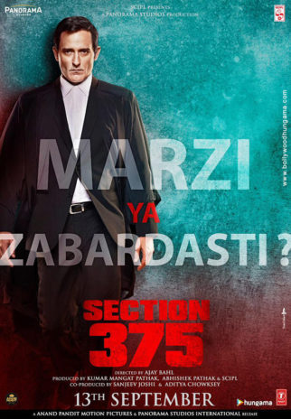 First Look Of The Movie Section 375