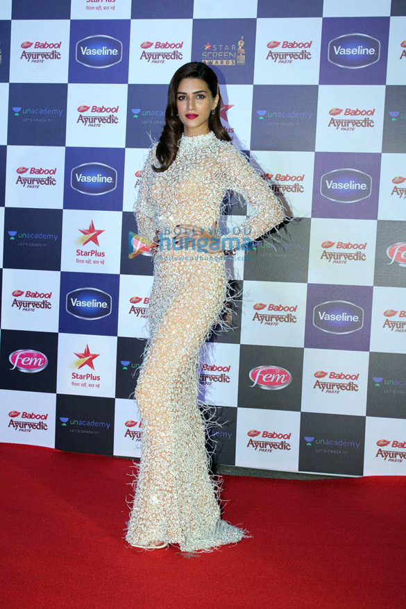Photos Celebs grace Star Screen Awards 20191 (10)