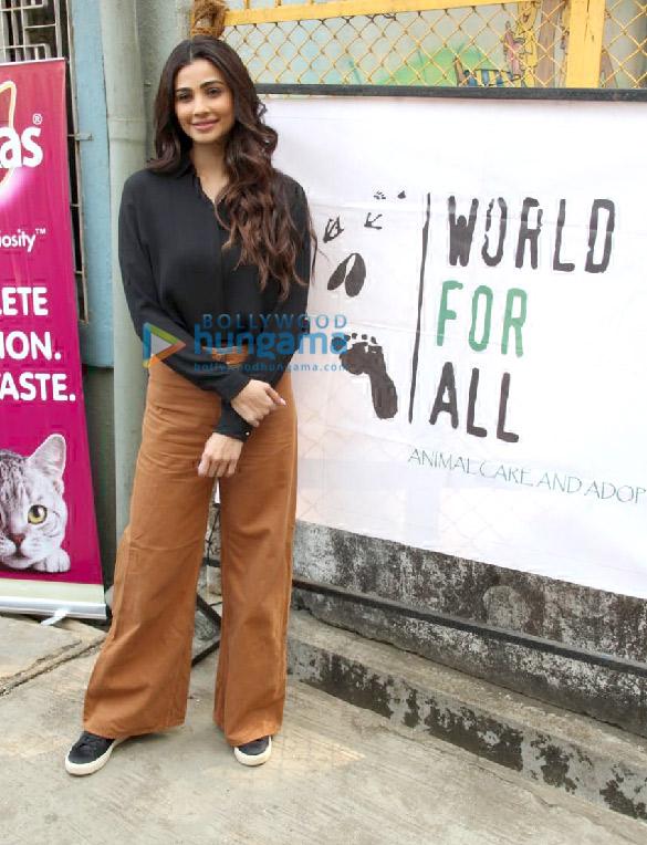 Photos: Daisy Shah, Zaheer Iqbal and Natasha Dalal grace Adoptathon 2019