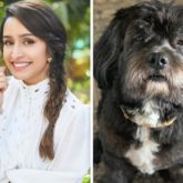 Shraddha Kapoor shares a funny meme about Shyloh and it has a Shahid Kapoor reference
