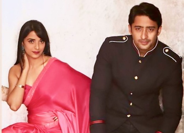 Shaheer Sheikh is all praises for his Mahabharaat co-star Pooja Sharma, says she is a wonderful co-actor