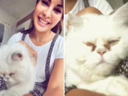 Jacqueline Fernandez shares selfies with her cat after calming meditation session