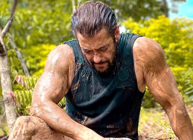WATCH Salman Khan starts farming, drives a tractor around the field