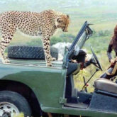 Karisma Kapoor remembers the time when she shot with a real Cheetah