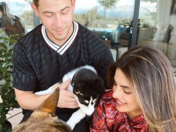 Priyanka Chopra Jonas and Nick Jonas rescue a husky, name him Panda