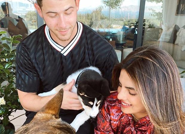 Nick Jonas & Priyanka Chopra Adopt Another Puppy Named Panda!