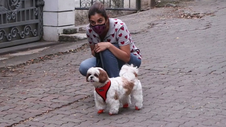 Sophie Choudry spotted with her pet dog
