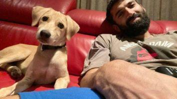 Aditya Roy Kapur adopts a cute dog, shares adorable picture