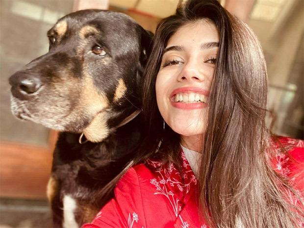 Sanjana Sanghi shares the joyful experience of having 5 pet dogs at her home