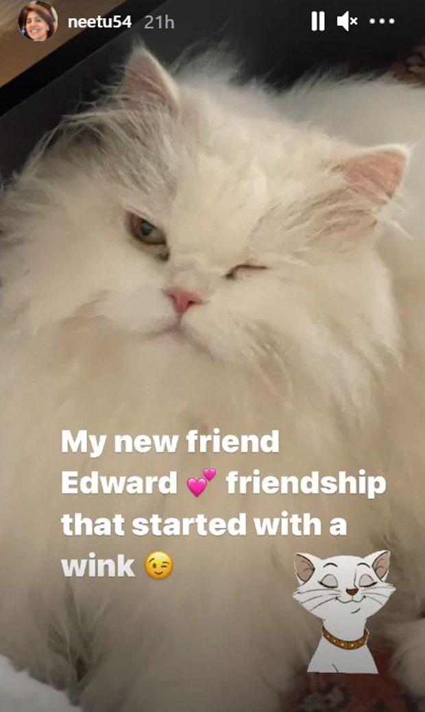 Neetu Kapoor befriends Alia Bhatt's cat Edward as the actress holidays in Maldives with Ranbir Kapoor; shares picture