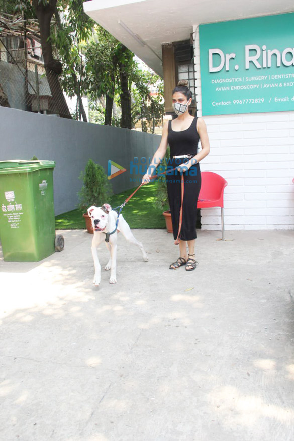 Photos Fatima Sana Shaikh spotted at a pet clinic (3)