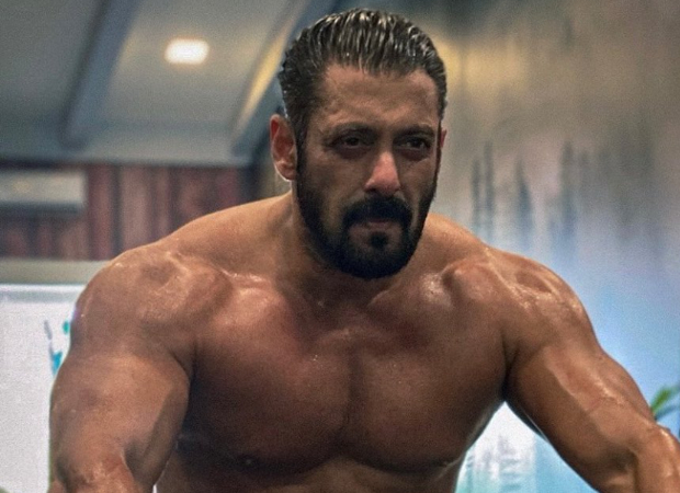 Salman Khan hits the gym to pump up his muscles for Tiger 3, watch video
